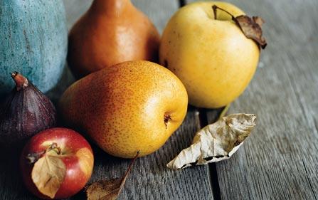Hoar_fallfruits