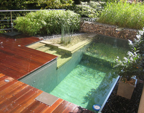 Pooldeckgreen090808