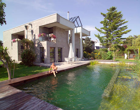 Poolwithplants090808