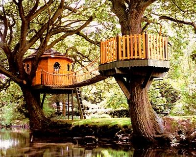Treehouserounduppic-2