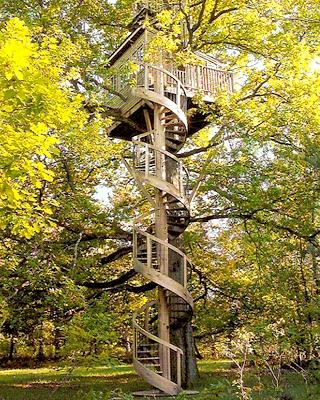 Treehouserounduppic-4