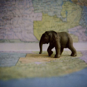 Esoule_elephant_map